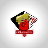 Moovers Chicago Inc image