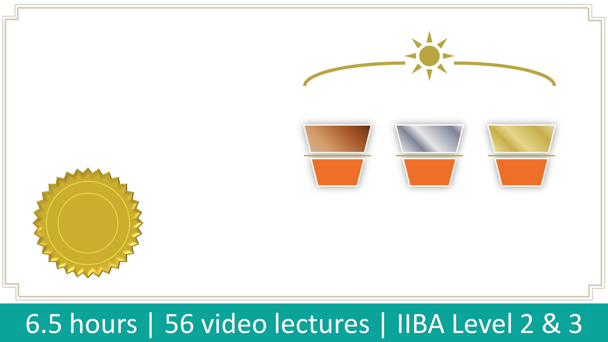 IIBA CBAP CCBA Business Analysis Certification Course
