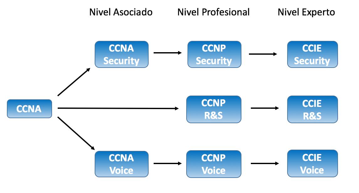 Netle Respecto A La Certificación Ccent Y Ccna Routing And