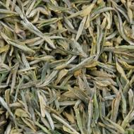 Gu Zhu Zi Sun (Purple Bamboo Shoot) Green Tea from Seven Cups