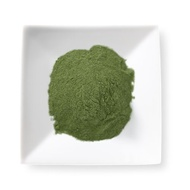 Matcha Green Tea Latte/Frappe Mix from Mighty Leaf Tea