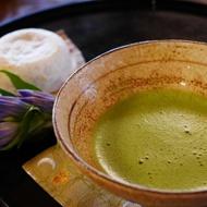 Matcha Culinary from Matcha4U