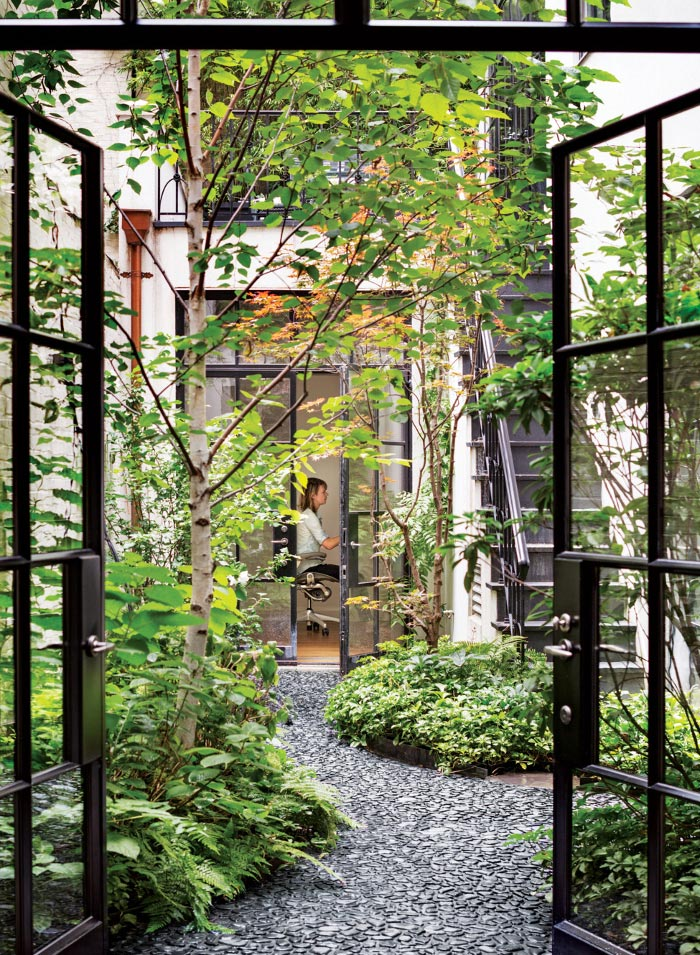 A NEW YORK COURTYARD