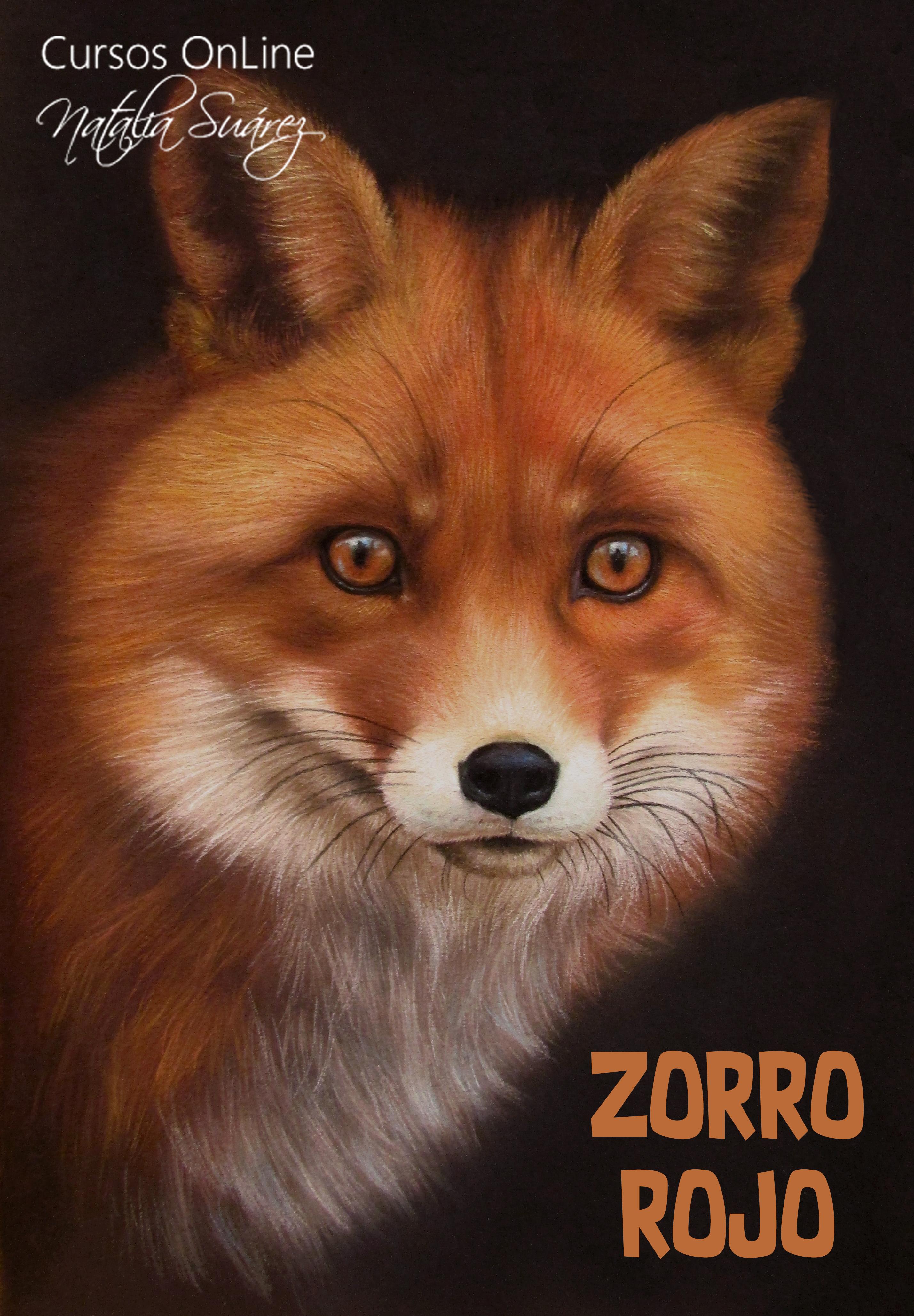 Zorro Rojo - Nivel 1 Animales - Pastel Studio