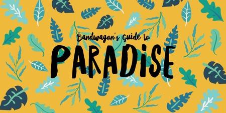 Bandwagon's Guide to Paradise International Music Festival
