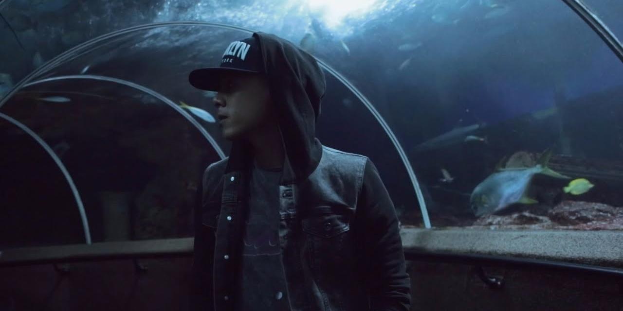 WATCH: CampFire explores an UnderWater World for their 'WildLife' music video