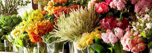 Floral Craftsman cover image | Mosman | Travelshopa