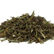 Pure White Tea from Subtle Tea