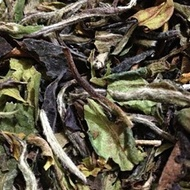 White Peony (Bai Mu Dan) from Tea Horse