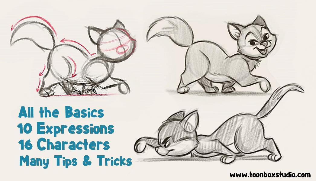 How To Draw Cartoon Cats Toonboxstudio Com