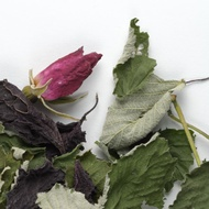 La Rose Pourpre from Camellia Sinensis