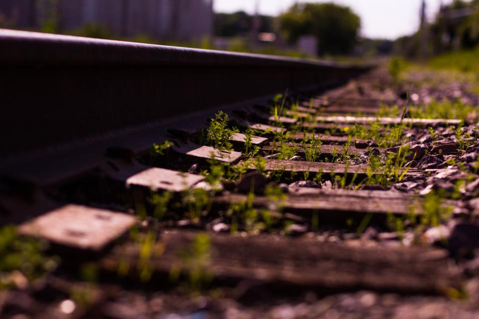 Creating a Simple API with Rails