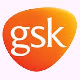 Gsk Social Media Success Lab Logo