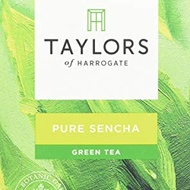 Pure Sencha from Taylors of Harrogate