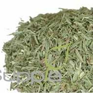 Lemongrass from Supple Skin Boutique