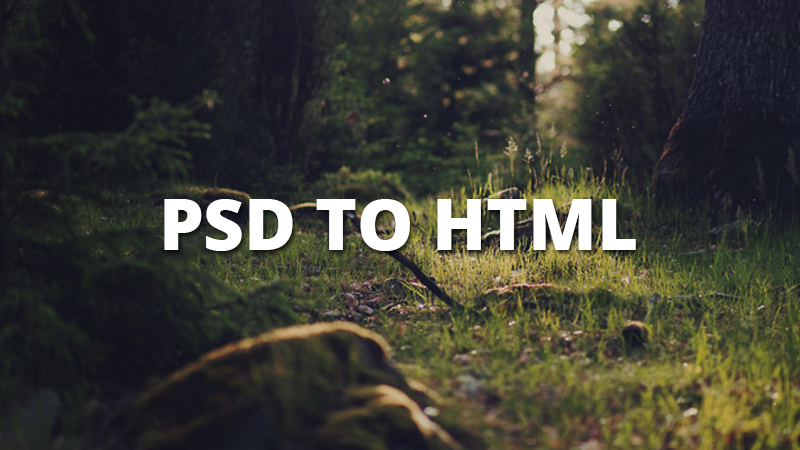 I will convert a PSD layout to HTML