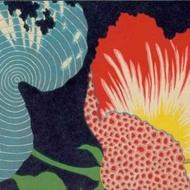 Yunnan Red Cloud from Postcard Teas
