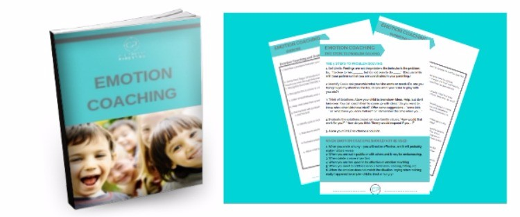 emotion coaching workbook