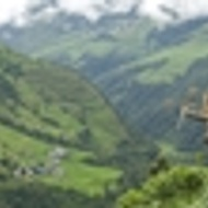 Nepalese Jun Chiyabari 2011 Organic Autumn Oolong from Grey's Teas