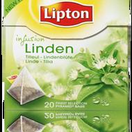 Linden (Tília) from Lipton