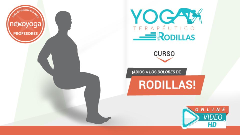 Curso de Yoga Terapeutico para Profesores de Yoga - LAS RODILLAS