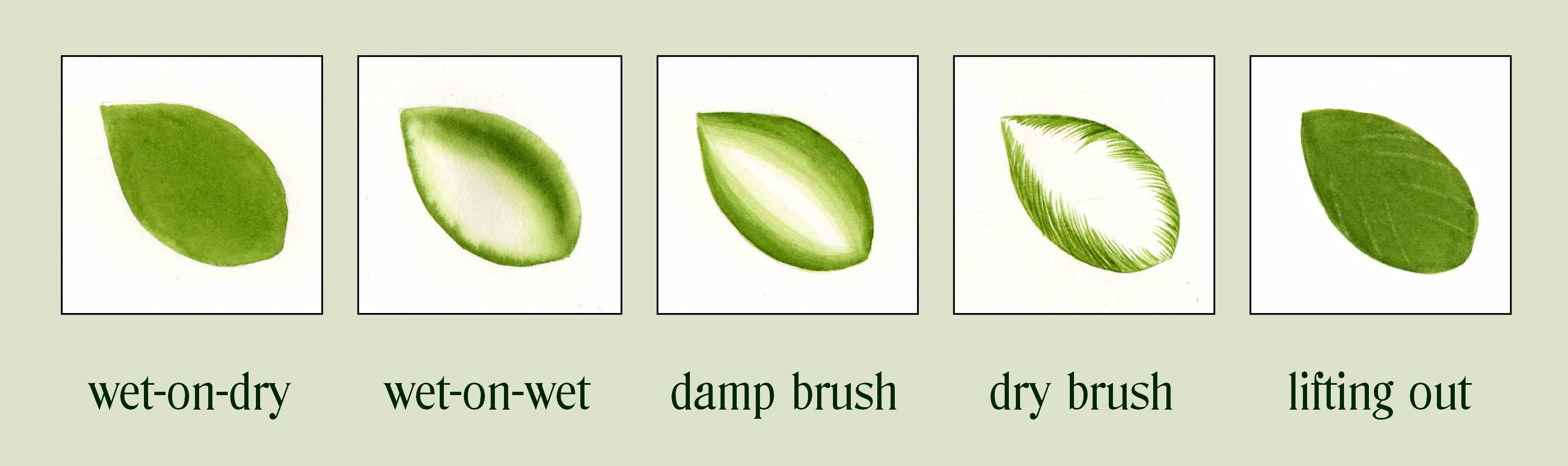 whole tutorial julia trickey botanical art tutorials