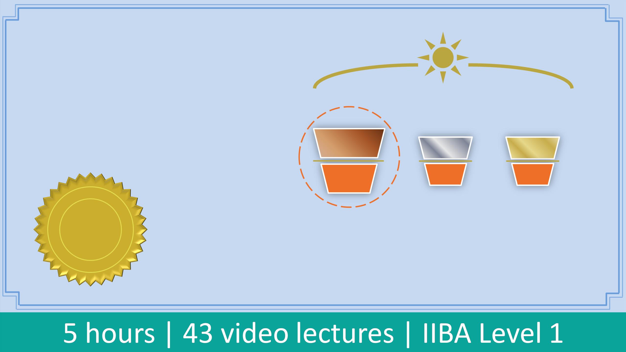 IIBA Entry Certificate in Business Analysis (ECBA) Course