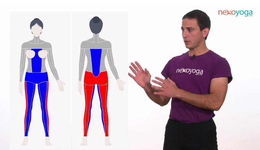 CLASE GRATUITA: Yoga para el dolor de