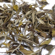 2010 Spring Organic Imperial White Peony White Tea from JK Tea Shop