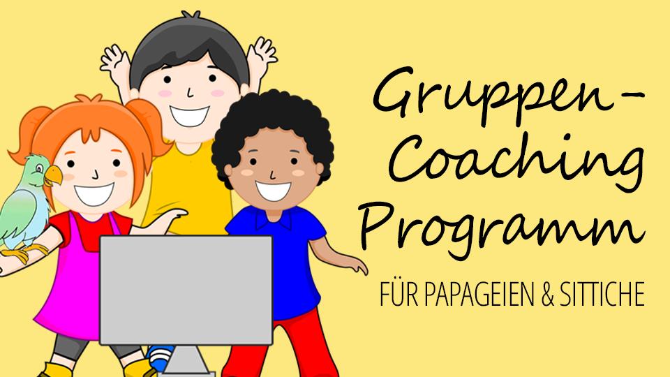 Gruppen-Coaching-Programm