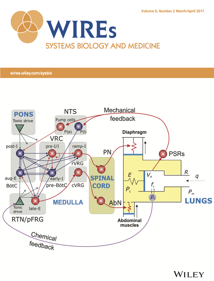 Template for submissions to Wiley Interdisciplinary Reviews: Systems Biology and Medicine