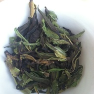 2016 Secret Forest White from The Essence of Tea