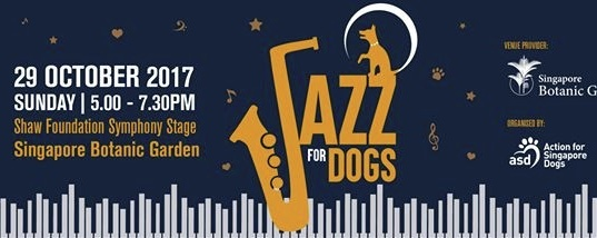 Jazz For Dogs