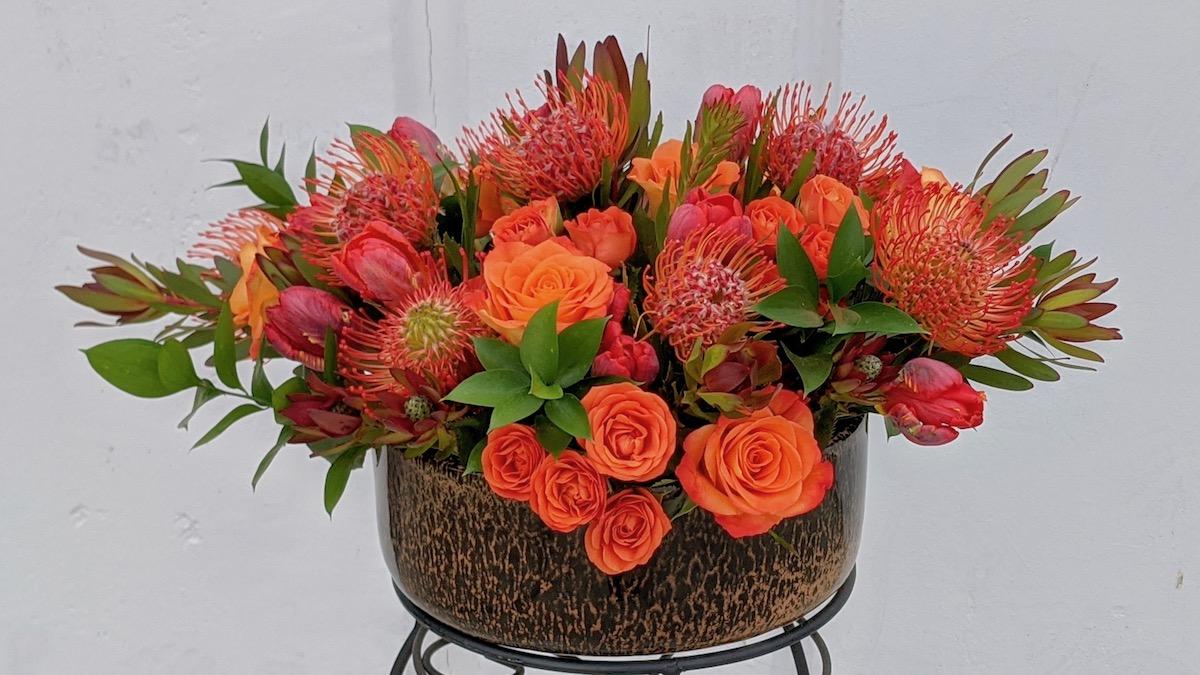 Flower Fridays: Orange Bowl